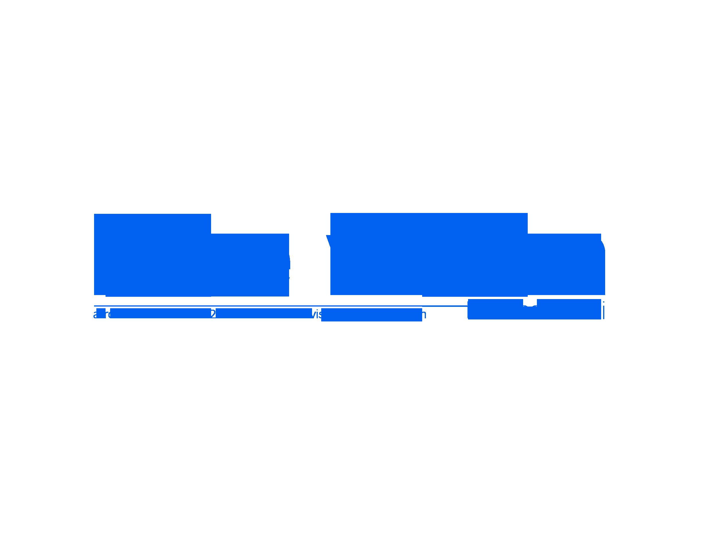 Blue Vision logo