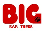 Big BAr Thess logo